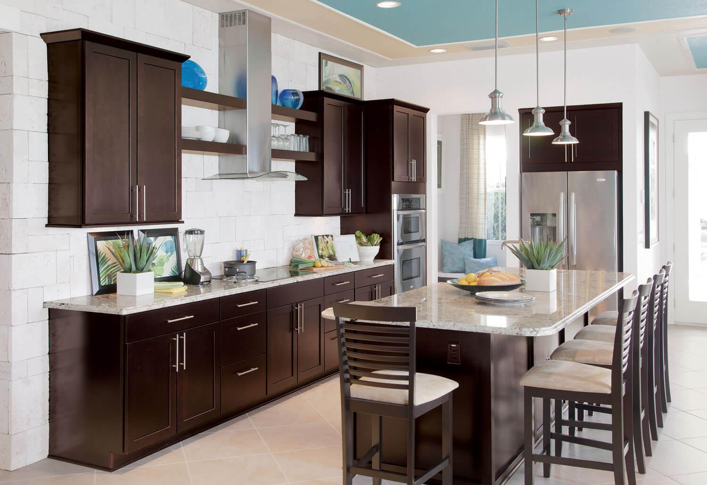 Builder Concept Home 2017 Gen Y Kitchen